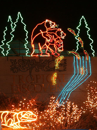 christmas across the carolinas riverbanks zoo columbia sc - Riverbanks Zoo Lights Before Christmas